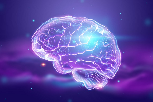 The image of the human brain, a hologram, a dark background. The concept of artificial intelligence, neural networks, robotization, machine learning. 3D illustration, copy space.