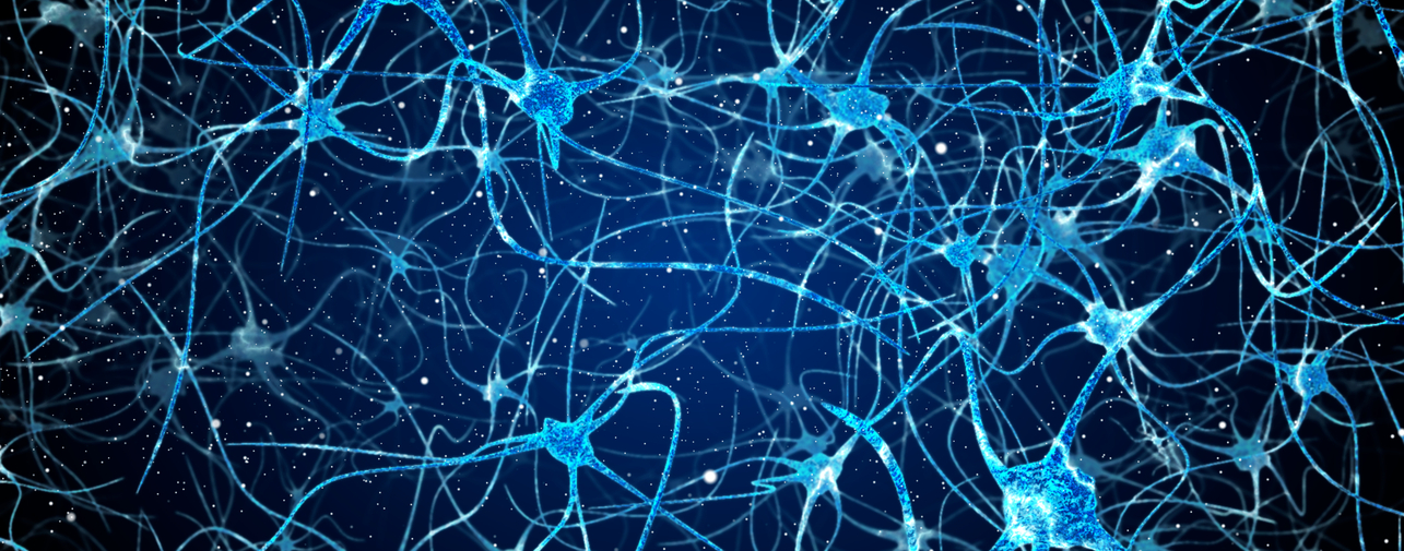 neuron banner